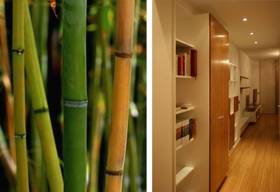 Diseño en bambú: revestimientos, tarimas y muebles a medida