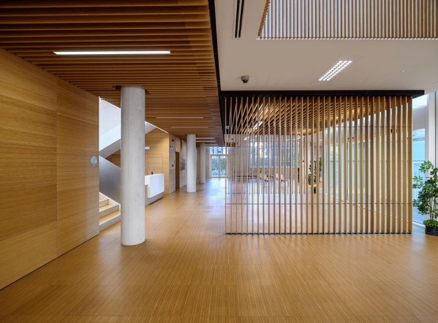 Bamboo wall paneling and bamboo screen in TGSS Motril