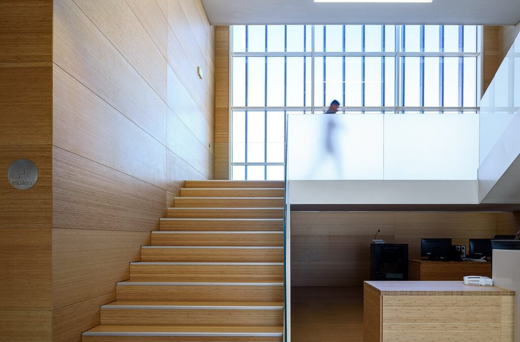 Escalera de bambú de la TGSS de Motril