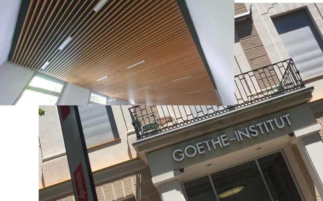 Bambú en la sala de exposiciones del Goethe-Institut en Madrid